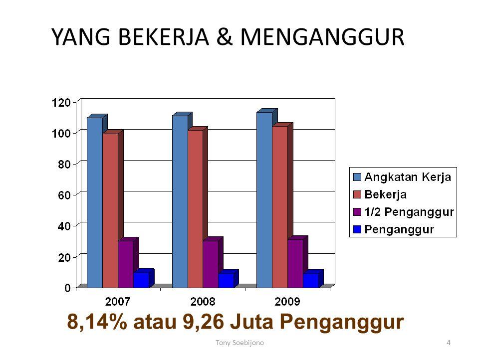 4 YANG BEKERJA & MENGANGGUR 8,14% atau 9,26 Juta Penganggur Tony Soebijono