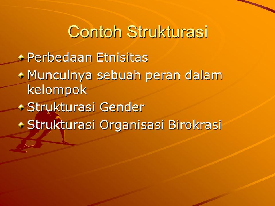 Contoh Strukturasi Perbedaan Etnisitas Munculnya sebuah peran dalam kelompok Strukturasi Gender Strukturasi Organisasi Birokrasi