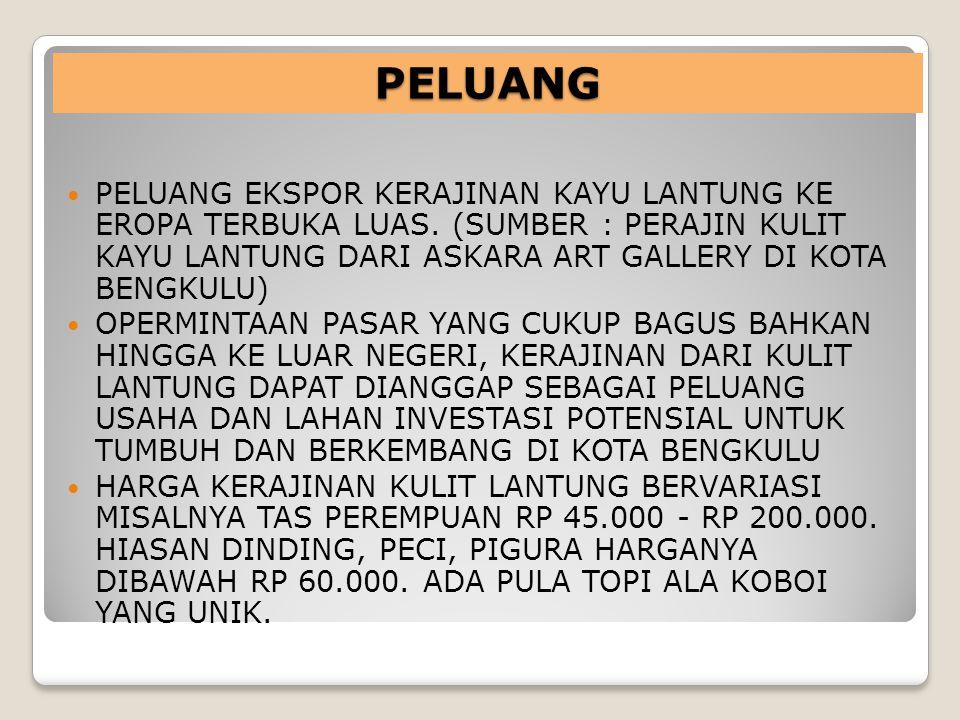 56 Daya Saing Kota Bengkulu sebagai Tujuan Wisata Propinsi Bengkulu dan sekitarnya: Penarikan wisatawan dari seluruh wilayah Provinsi Bengkulu dan Prop.