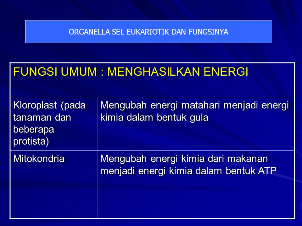 ORGANELLA SEL EUKARIOTIK DAN FUNGSINYA FUNGSI UMUM : MENGHASILKAN ENERGI Kloroplast (pada tanaman dan beberapa protista) Mengubah energi matahari menjadi energi kimia dalam bentuk gula Mitokondria Mengubah energi kimia dari makanan menjadi energi kimia dalam bentuk ATP