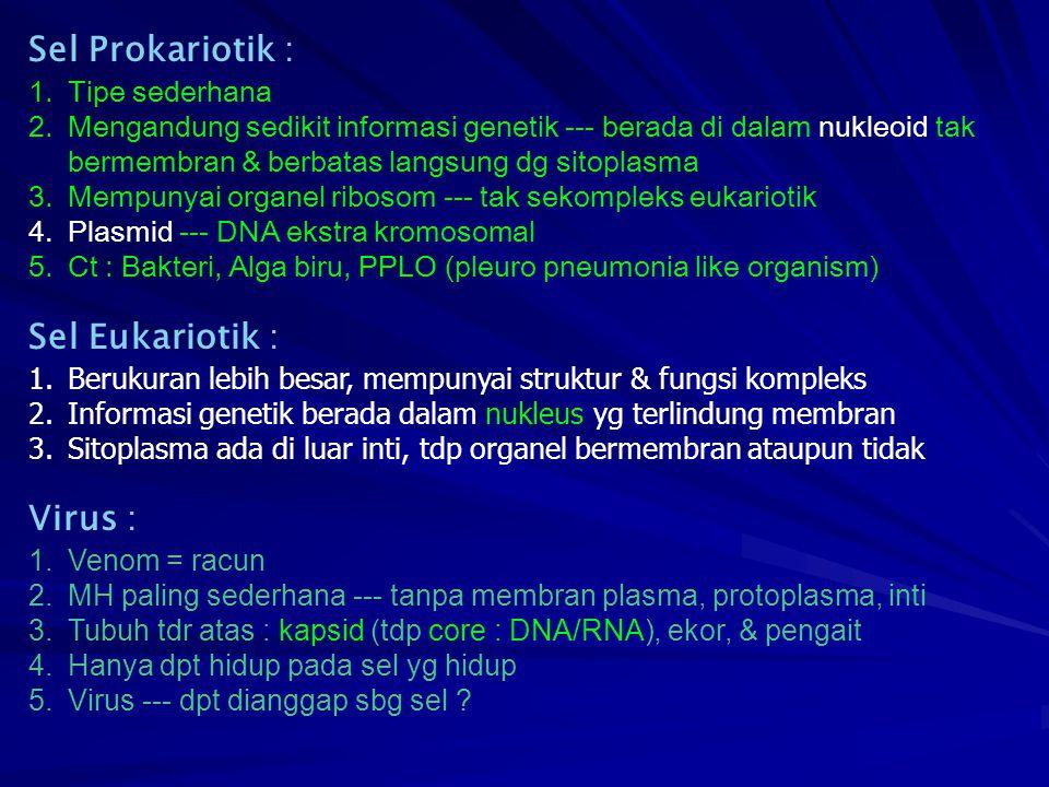 Sel Prokariotik : 1.Tipe sederhana 2.Mengandung sedikit informasi genetik --- berada di dalam nukleoid tak bermembran & berbatas langsung dg sitoplasm
