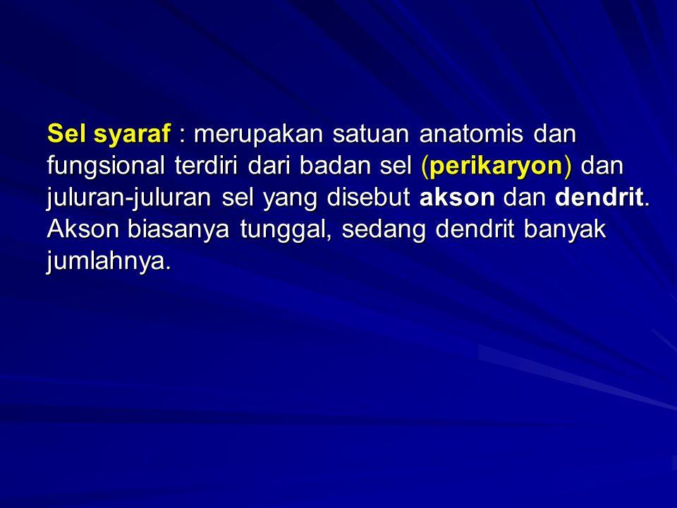 Sel syaraf : merupakan satuan anatomis dan fungsional terdiri dari badan sel (perikaryon) dan juluran-juluran sel yang disebut akson dan dendrit. Akso