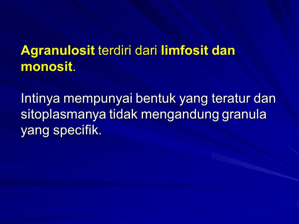 Agranulosit terdiri dari limfosit dan monosit. Intinya mempunyai bentuk yang teratur dan sitoplasmanya tidak mengandung granula yang specifik.