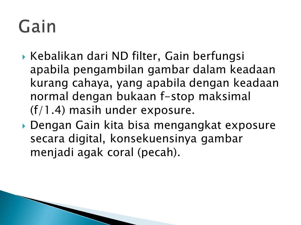 Kebalikan dari ND filter, Gain berfungsi apabila pengambilan gambar dalam keadaan kurang cahaya, yang apabila dengan keadaan normal dengan bukaan f-