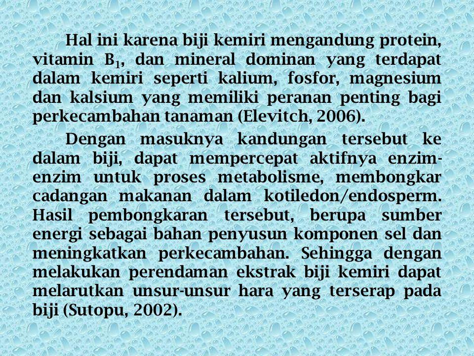 Hal ini karena biji kemiri mengandung protein, vitamin B 1, dan mineral dominan yang terdapat dalam kemiri seperti kalium, fosfor, magnesium dan kalsium yang memiliki peranan penting bagi perkecambahan tanaman (Elevitch, 2006).