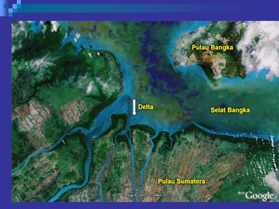 Landform Fluvio marin pantai timur sumatera