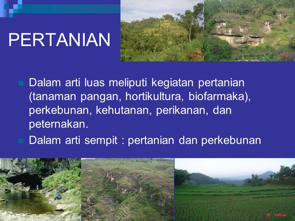 PERTANIAN Dalam arti luas meliputi kegiatan pertanian (tanaman pangan, hortikultura, biofarmaka), perkebunan, kehutanan, perikanan, dan peternakan. Da