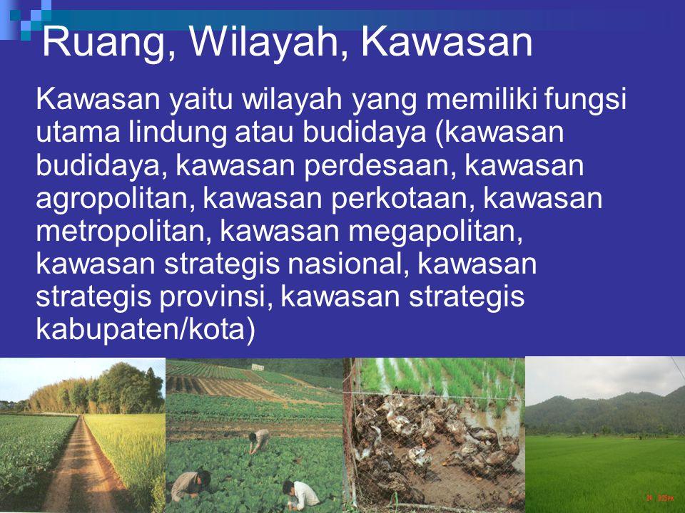 Ruang, Wilayah, Kawasan Kawasan yaitu wilayah yang memiliki fungsi utama lindung atau budidaya (kawasan budidaya, kawasan perdesaan, kawasan agropolit