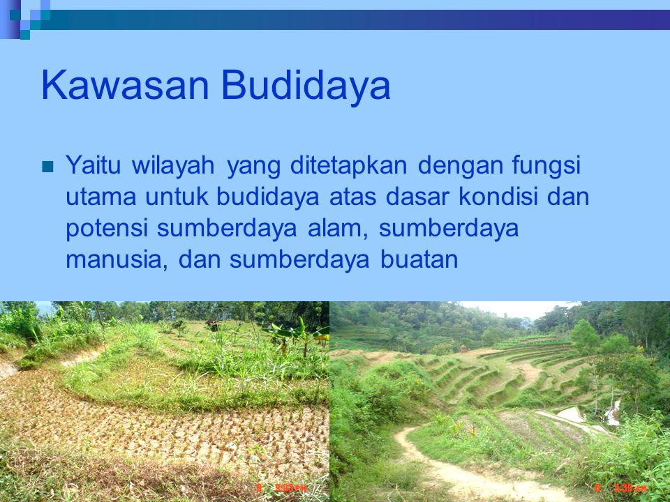Kawasan Budidaya Yaitu wilayah yang ditetapkan dengan fungsi utama untuk budidaya atas dasar kondisi dan potensi sumberdaya alam, sumberdaya manusia,