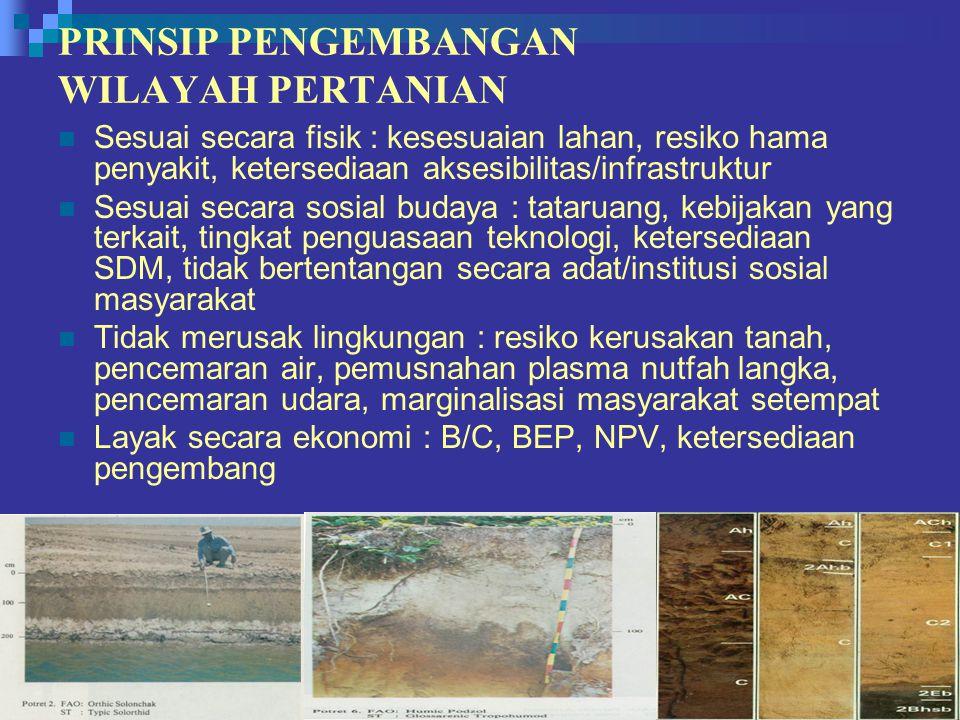 PRINSIP PENGEMBANGAN WILAYAH PERTANIAN Sesuai secara fisik : kesesuaian lahan, resiko hama penyakit, ketersediaan aksesibilitas/infrastruktur Sesuai s