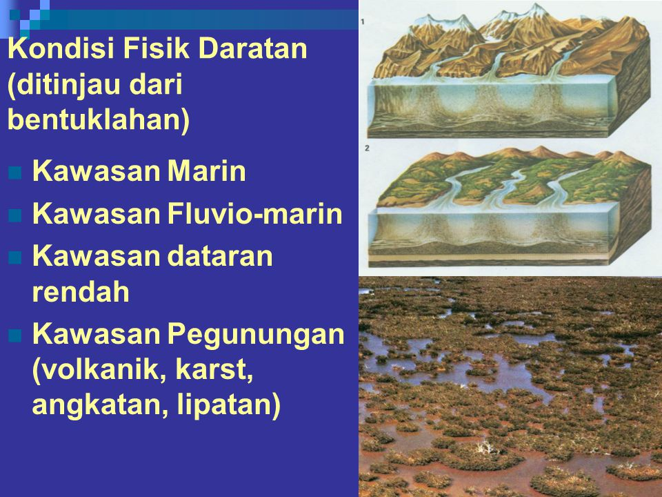 Kondisi Fisik Daratan (ditinjau dari bentuklahan) Kawasan Marin Kawasan Fluvio-marin Kawasan dataran rendah Kawasan Pegunungan (volkanik, karst, angkatan, lipatan)