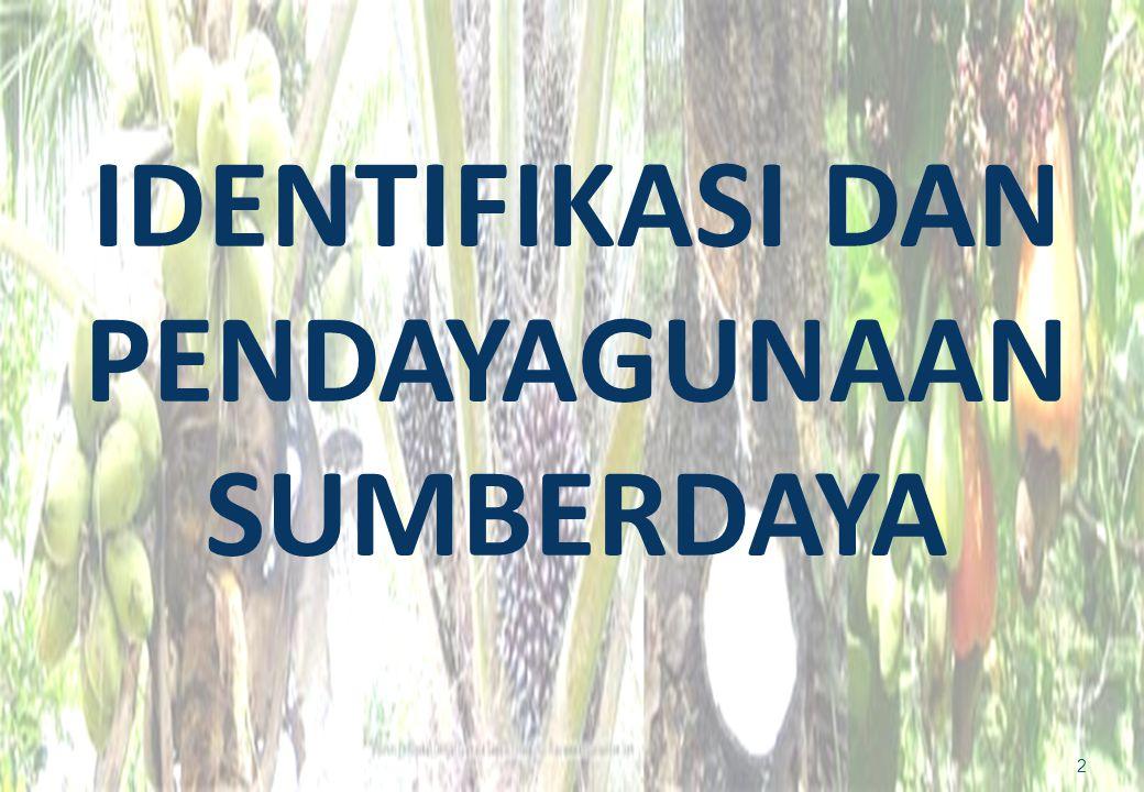 IDENTIFIKASI DAN PENDAYAGUNAAN SUMBERDAYA 2