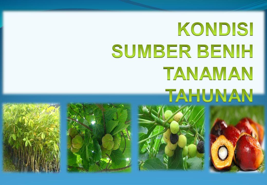 No.Kegiatan Utama/Prov./KabVolumeBiaya (Rp.000) 1.Pembangunan Kebun Induk Kemiri Sunan 1.Jawa Barat5 Ha72.630 Jumlah5 Ha72.630 4.