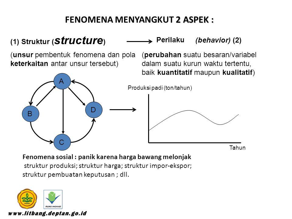 2 ASPEK : FENOMENA MENYANGKUT 2 ASPEK : (1) Struktur ( structure ) Perilaku (behavior) (2) (unsur pembentuk fenomena dan pola keterkaitan antar unsur tersebut) (perubahan suatu besaran/variabel dalam suatu kurun waktu tertentu, baik kuantitatif maupun kualitatif) C A D B Tahun Produksi padi (ton/tahun) Fenomena sosial : panik karena harga bawang melonjak struktur produksi; struktur harga; struktur impor-ekspor; struktur pembuatan keputusan ; dll.