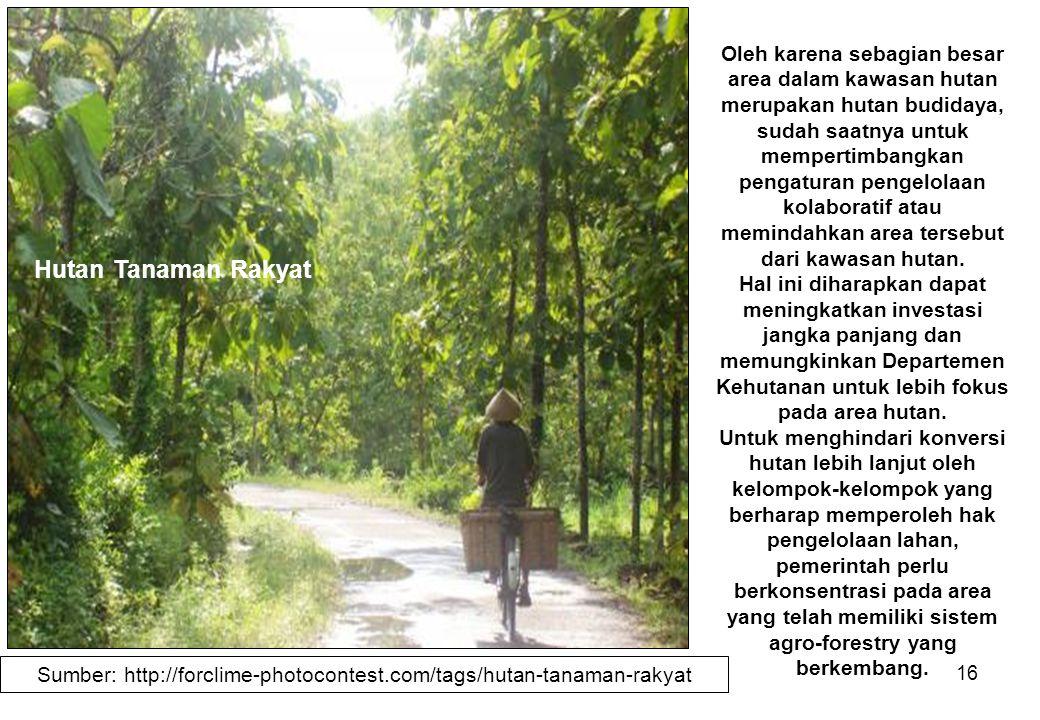 16 Oleh karena sebagian besar area dalam kawasan hutan merupakan hutan budidaya, sudah saatnya untuk mempertimbangkan pengaturan pengelolaan kolaborat