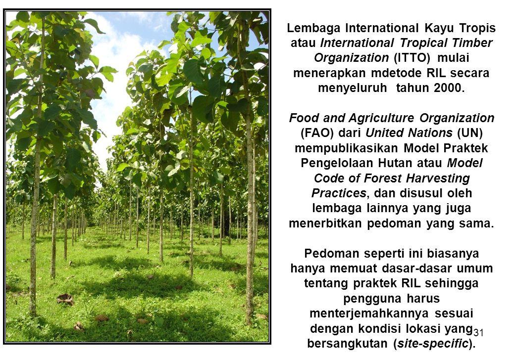 31 Lembaga International Kayu Tropis atau International Tropical Timber Organization (ITTO) mulai menerapkan mdetode RIL secara menyeluruh tahun 2000.