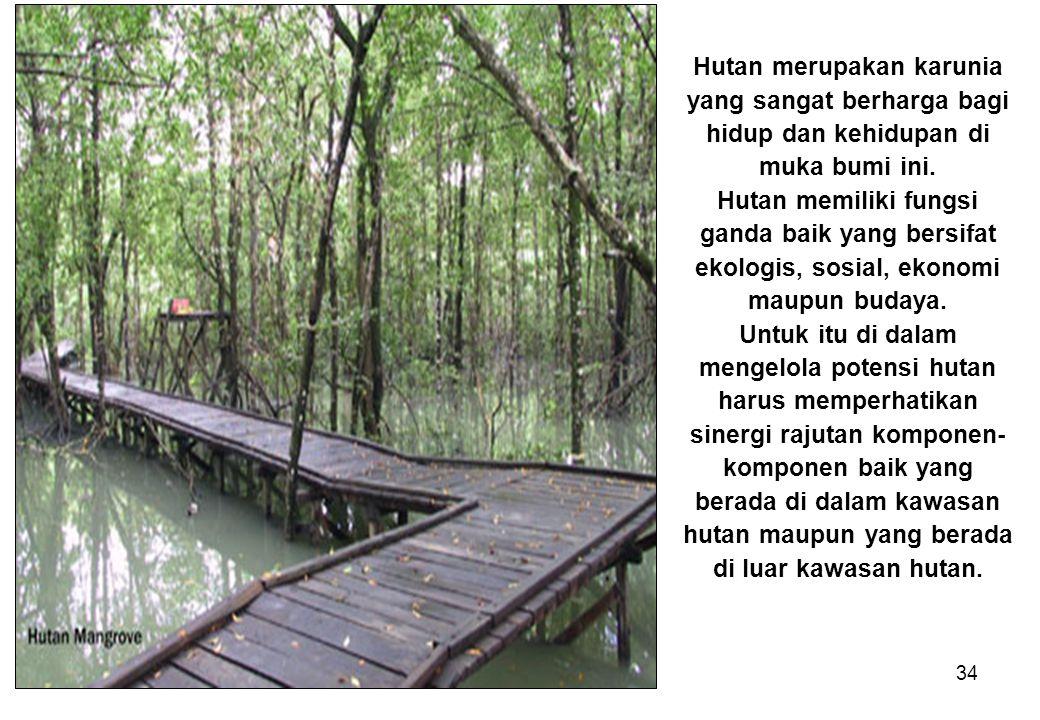 34 Hutan merupakan karunia yang sangat berharga bagi hidup dan kehidupan di muka bumi ini. Hutan memiliki fungsi ganda baik yang bersifat ekologis, so