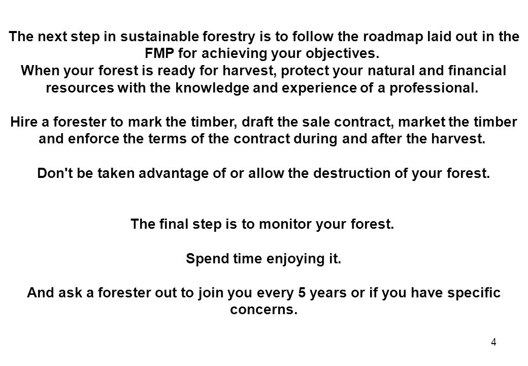 25 Generalized Tree Plantation Forestry System