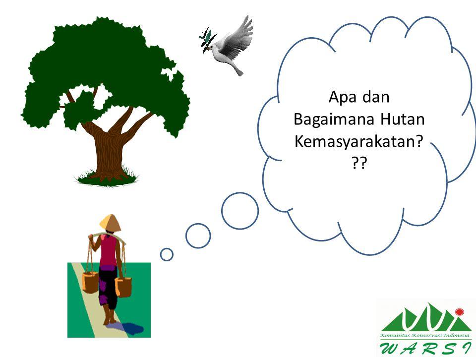 Apa dan Bagaimana Hutan Kemasyarakatan? ??