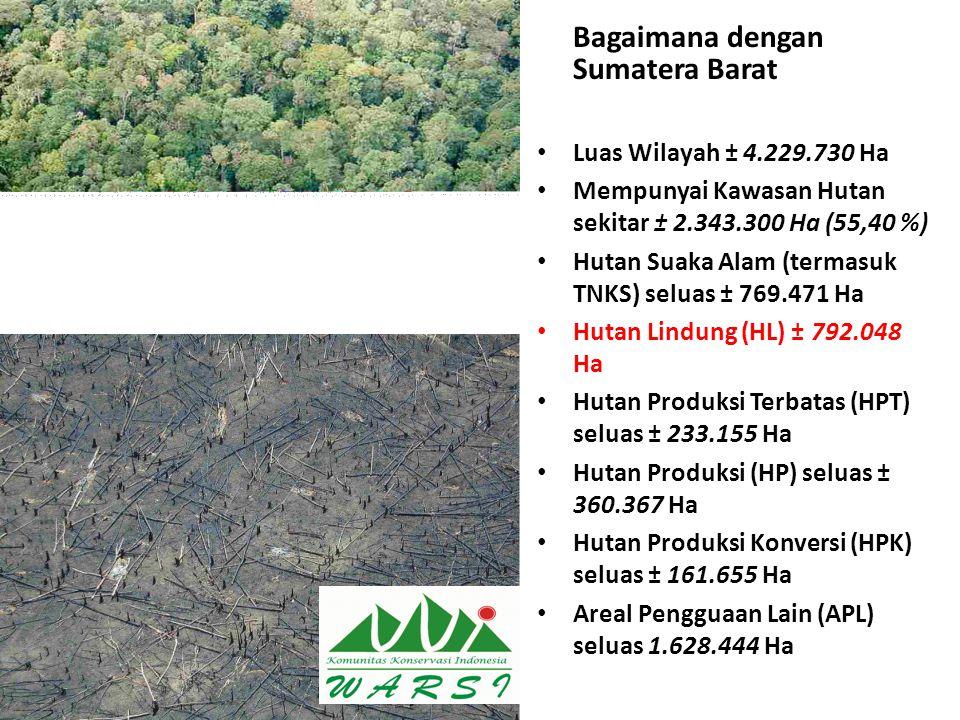 Bagaimana dengan Sumatera Barat Luas Wilayah ± 4.229.730 Ha Mempunyai Kawasan Hutan sekitar ± 2.343.300 Ha (55,40 %) Hutan Suaka Alam (termasuk TNKS)