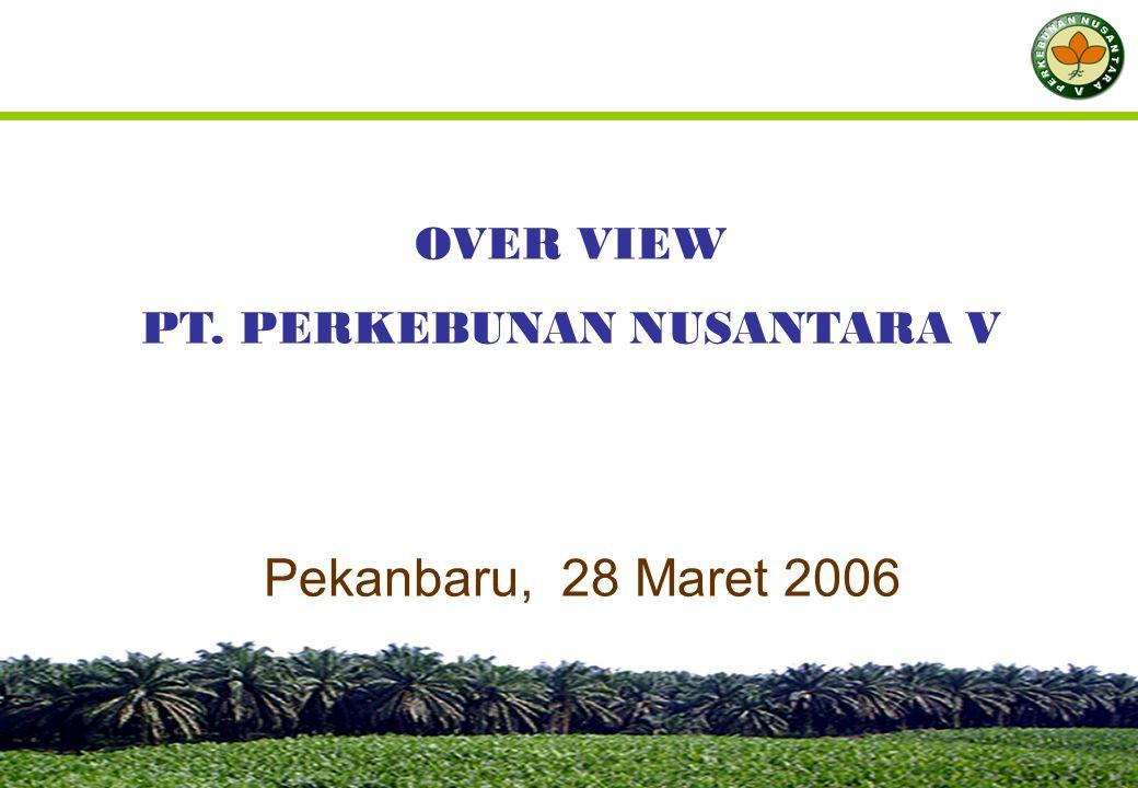 Pekanbaru, 28 Maret 2006 OVER VIEW PT. PERKEBUNAN NUSANTARA V