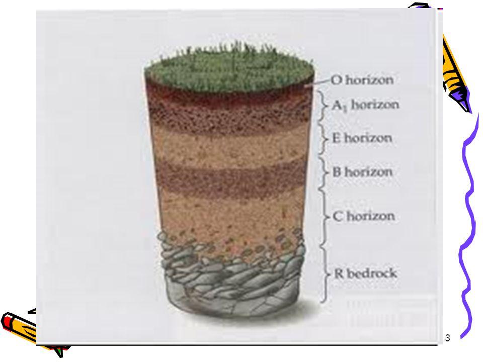 14 Menurut Arsyad (1976): 8 kelas (kelas I s/d VIII) Soil Conservation Service-USDA, 8 kelas, banyak digunakan di beberapa negara berkembang Soepraptohardjo (1970): 8 kelas, untuk pertanian
