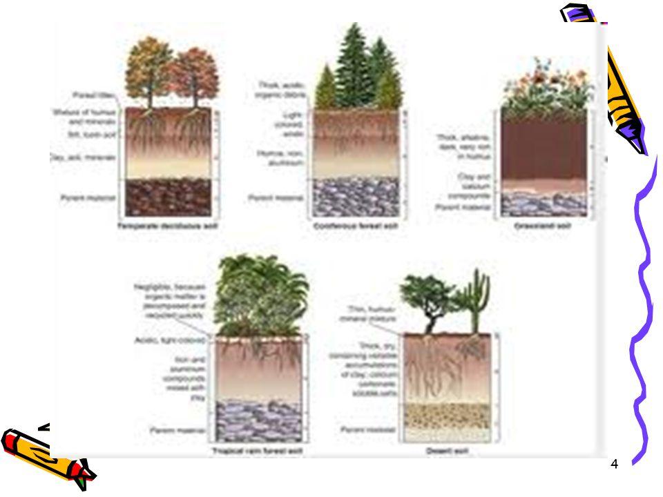 5 Lahan Suatu wilayah daratan yang ciri- cirinya merangkum semua tanda pengenal biosfer, atmosfer, tanah, geologi, timbulan (relief), hidrologi, populasi tumbuhan, dan hewan serta hasil kegiatan manusia masa lalu dan masa kini, yang bersifat mantap dan mendaur