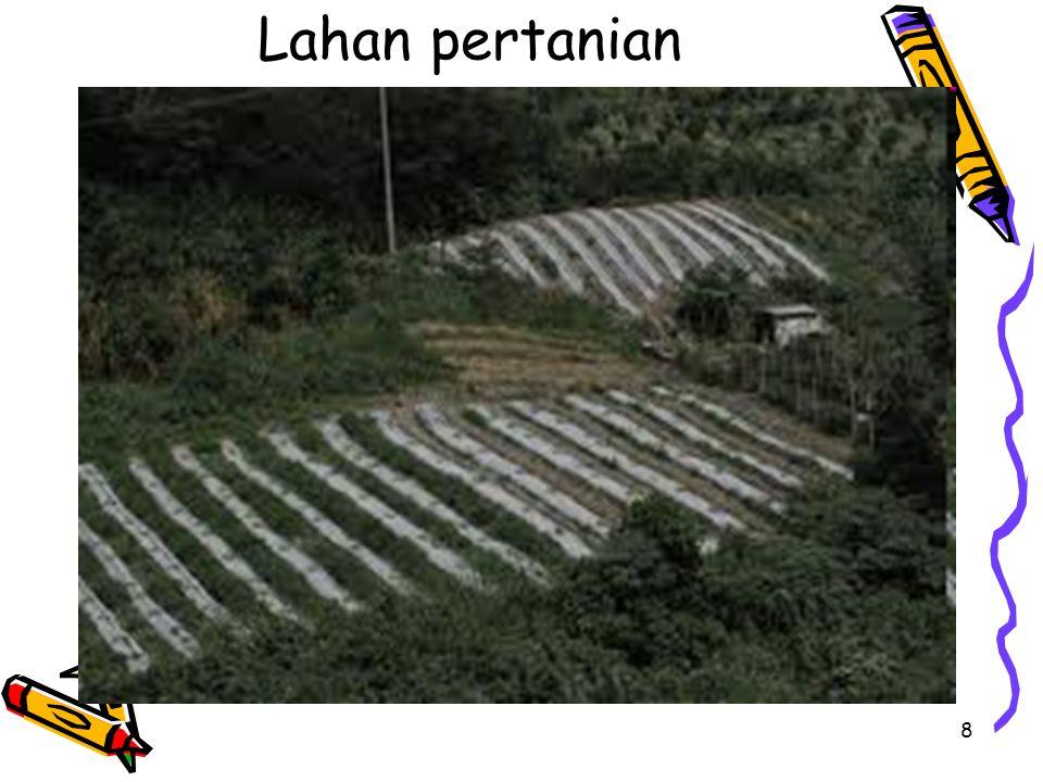 19 Masalah-masalah Tanah dan lahan: Laju erosi tanah yang tinggi.