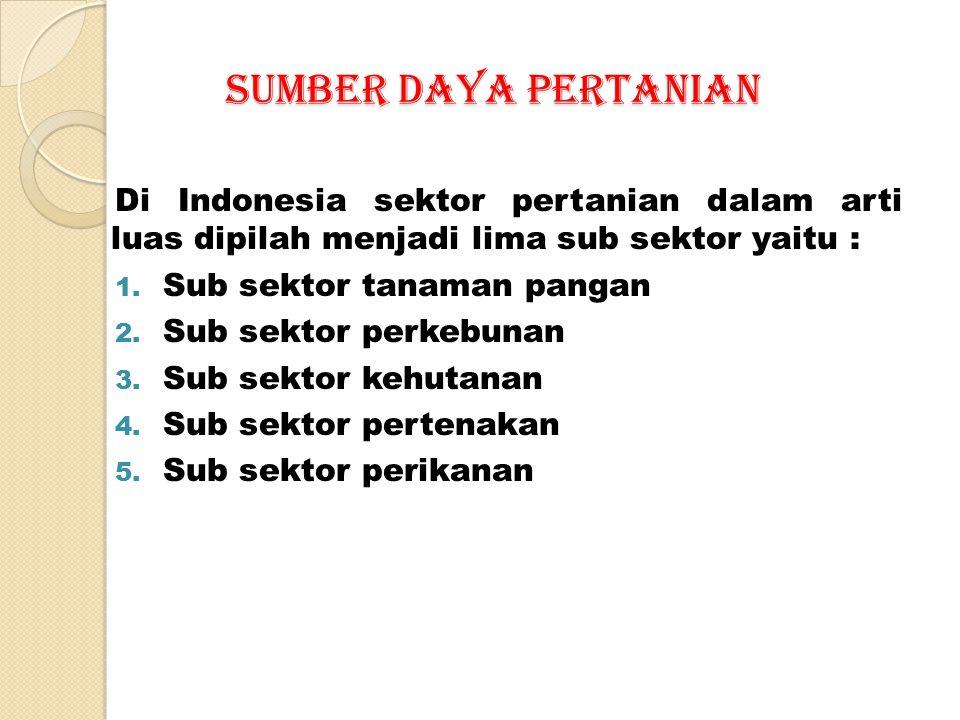 SUMBER DAYA PERTANIAN SUMBER DAYA PERTANIAN Di Indonesia sektor pertanian dalam arti luas dipilah menjadi lima sub sektor yaitu : 1.