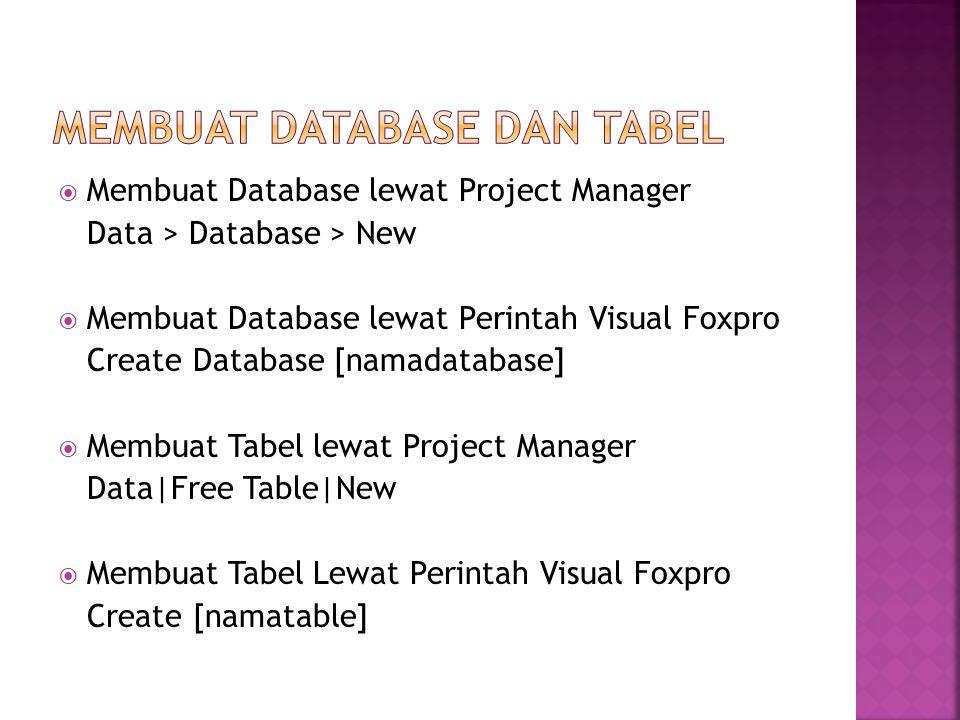  Membuat Tabel Lewat Perintah Visual Foxpro Create [namatable]