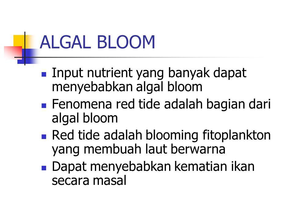 ALGAL BLOOM Input nutrient yang banyak dapat menyebabkan algal bloom Fenomena red tide adalah bagian dari algal bloom Red tide adalah blooming fitopla