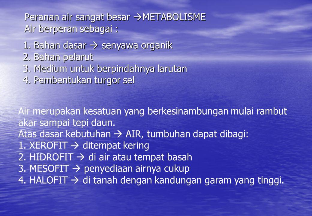 Peranan air sangat besar  METABOLISME Air berperan sebagai : 1.Bahan dasar  senyawa organik 2.Bahan pelarut 3.Medium untuk berpindahnya larutan 4.Pe