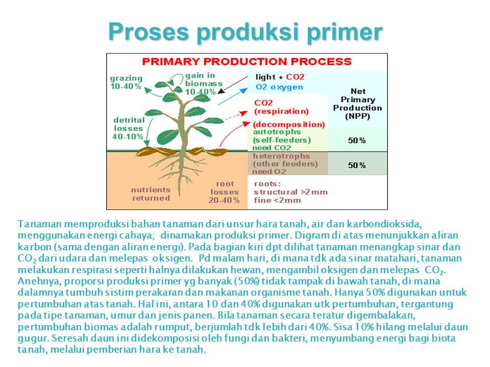Proses produksi primer Tanaman memproduksi bahan tanaman dari unsur hara tanah, air dan karbondioksida, menggunakan energi cahaya; dinamakan produksi