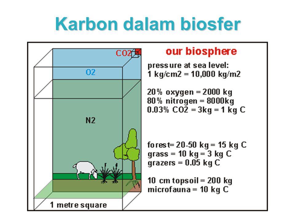Karbon Daur karbon telah dikemukakan pada bagian awal kuliah ini, dan lebih jauh dibahas dalam bagian lain (pemanasan global).
