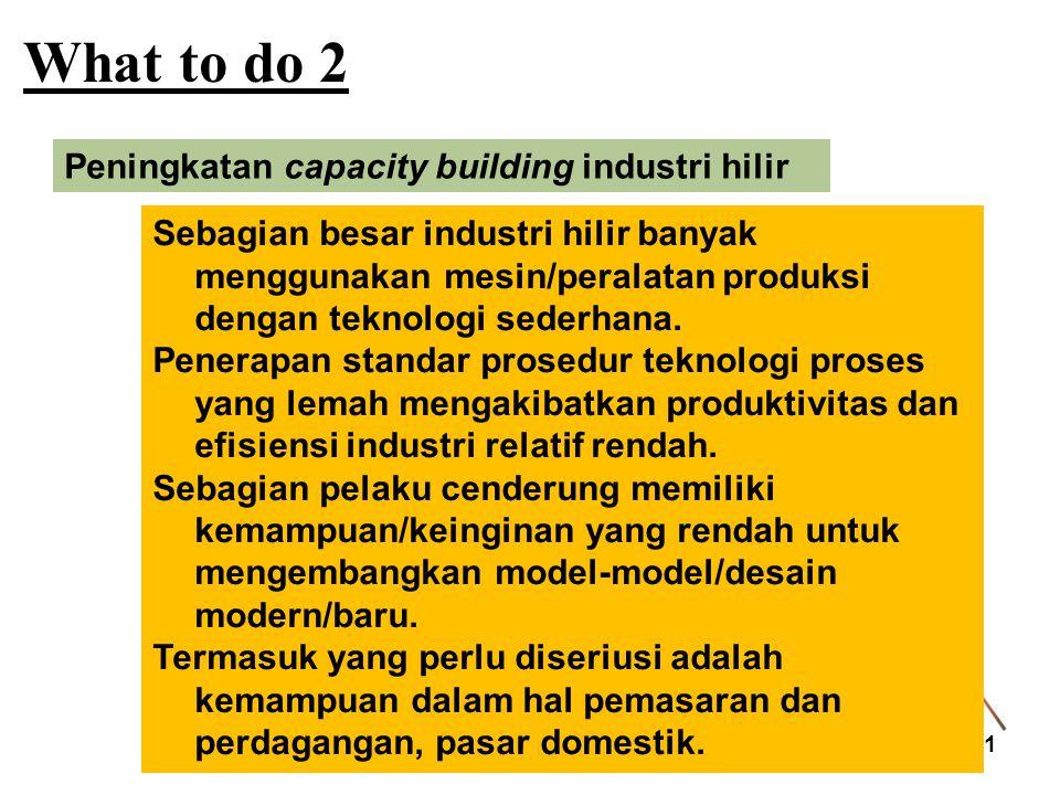What to do 2 11 Peningkatan capacity building industri hilir Sebagian besar industri hilir banyak menggunakan mesin/peralatan produksi dengan teknolog