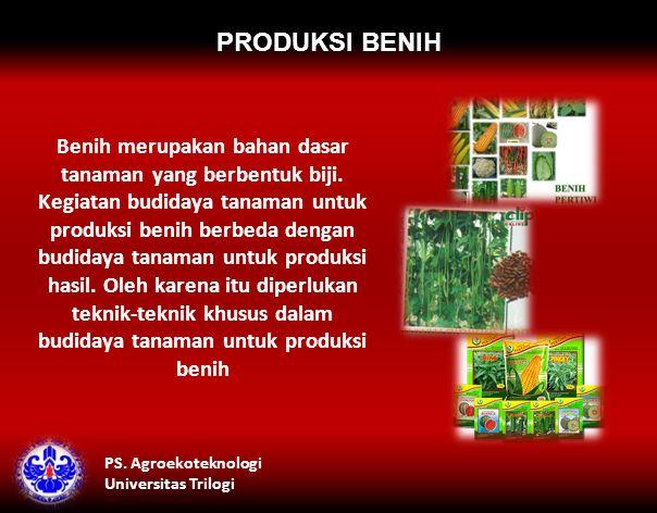 PRODUKSI BENIH Benih merupakan bahan dasar tanaman yang berbentuk biji.