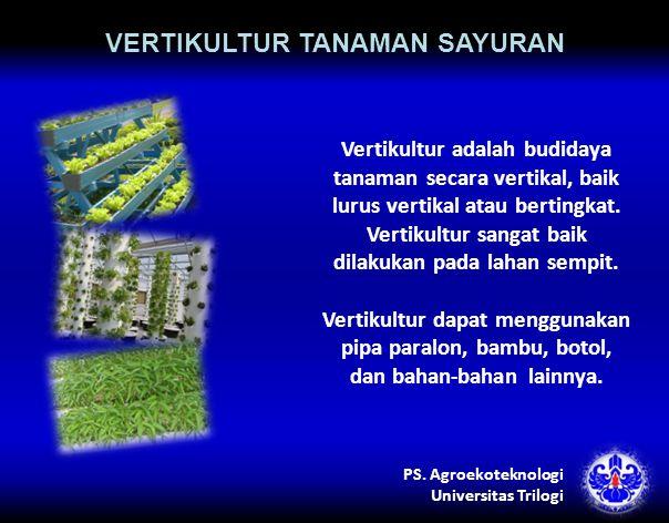 VERTIKULTUR TANAMAN SAYURAN Vertikultur adalah budidaya tanaman secara vertikal, baik lurus vertikal atau bertingkat.
