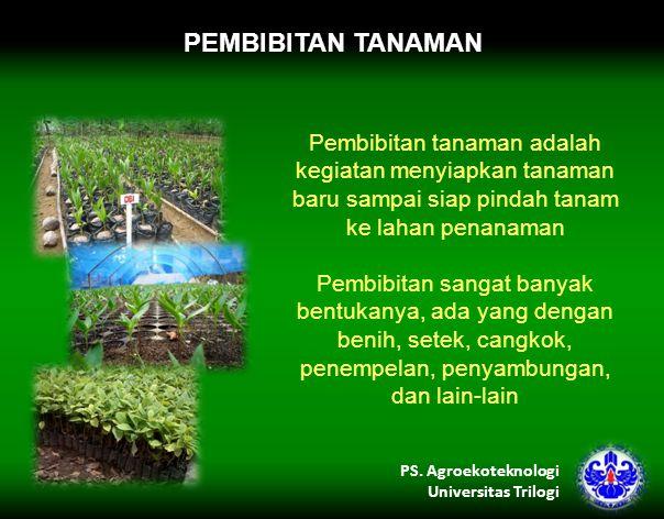 PEMBIBITAN TANAMAN Pembibitan tanaman adalah kegiatan menyiapkan tanaman baru sampai siap pindah tanam ke lahan penanaman Pembibitan sangat banyak bentukanya, ada yang dengan benih, setek, cangkok, penempelan, penyambungan, dan lain-lain PS.