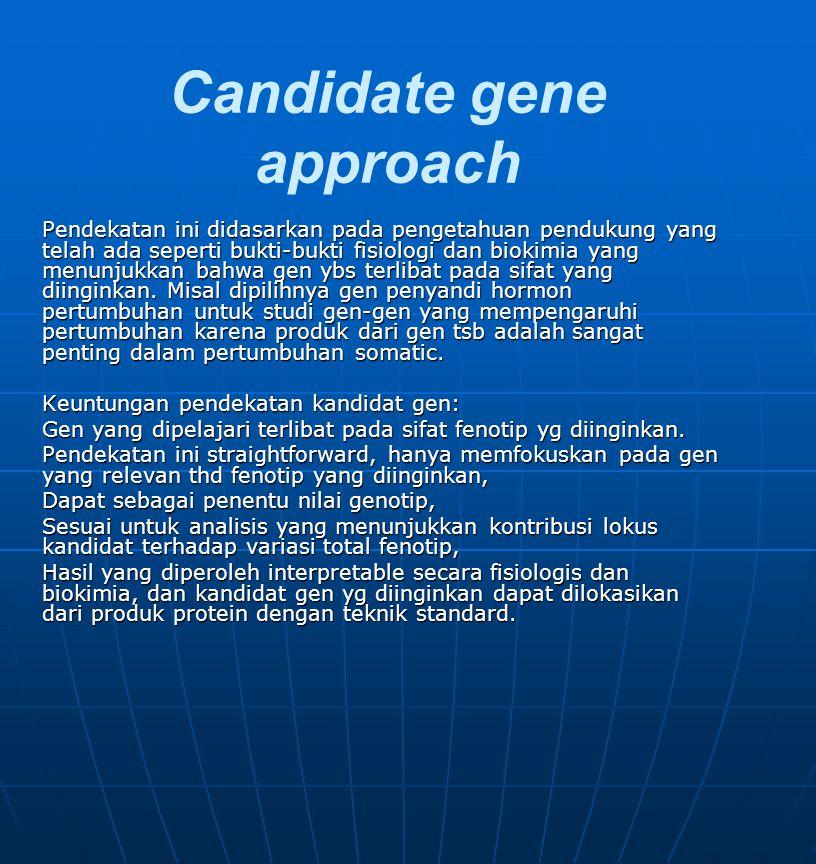 Candidate gene approach Langkah yang diperlukan: identifikasi locus/loci diinginkan berdasarkan bukti fisiologis dan biokimia yang berhubungan dengan sifat fenotip identifikasi varian molekuler pada atau sekitar locus/loci tersebut.