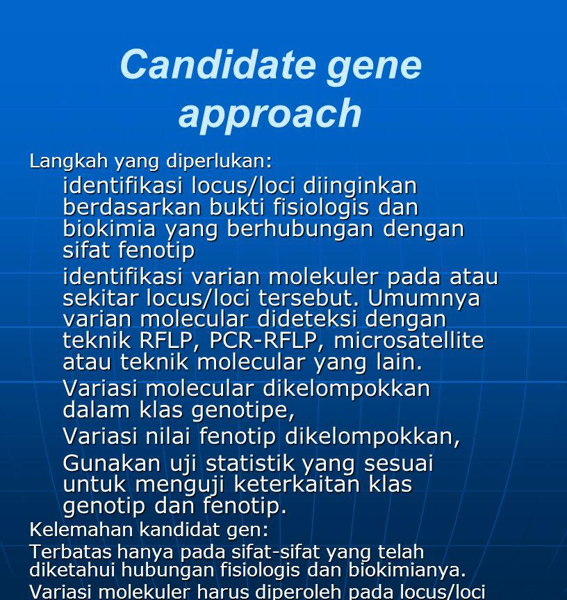 Random marker approach Pendekatan random berusaha melokalisasi marka gen dengan melakukan pengukuran genotipe pada sejumlah loki yang sangat banyak (keseluruhan genome) tanpa mengetahui pengaruh fenotipnya, dengan harapan ada locus/loci yang berpautan dengan sifat yang diinginkan.