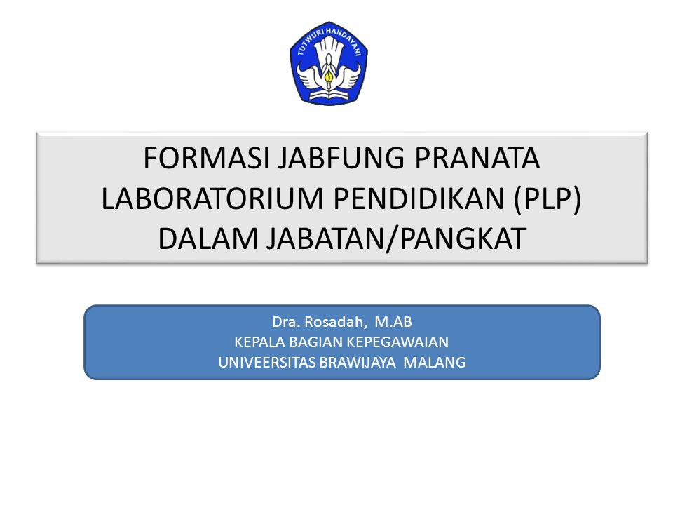 FORMASI JABFUNG PRANATA LABORATORIUM PENDIDIKAN (PLP) DALAM JABATAN/PANGKAT Dra. Rosadah, M.AB KEPALA BAGIAN KEPEGAWAIAN UNIVEERSITAS BRAWIJAYA MALANG
