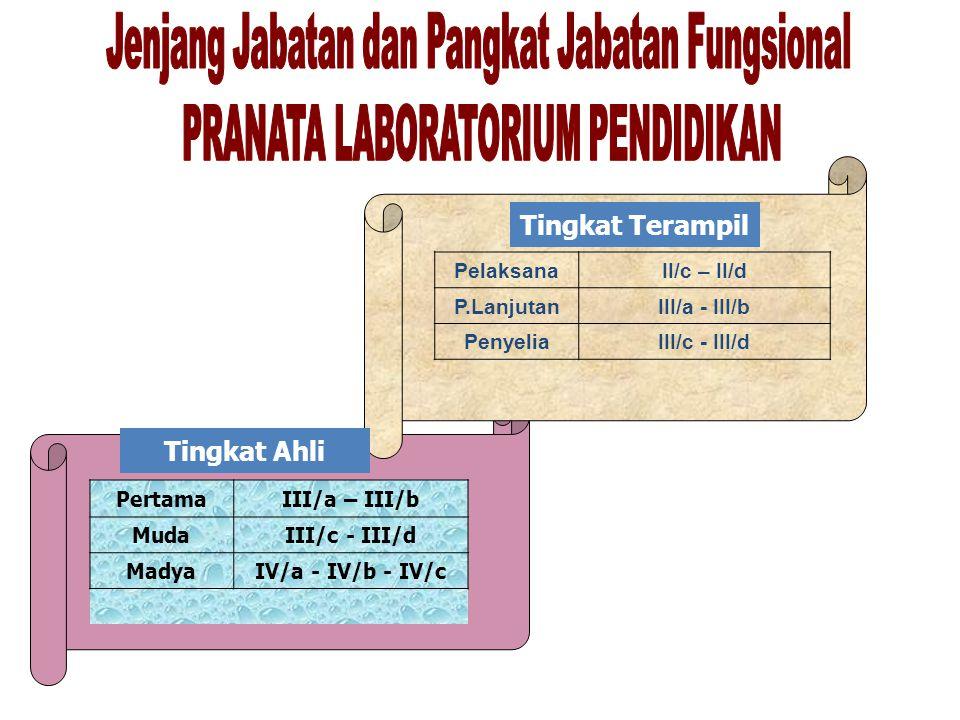 PertamaIII/a – III/b MudaIII/c - III/d MadyaIV/a - IV/b - IV/c PelaksanaII/c – II/d P.LanjutanIII/a - III/b PenyeliaIII/c - III/d Tingkat Terampil Tin