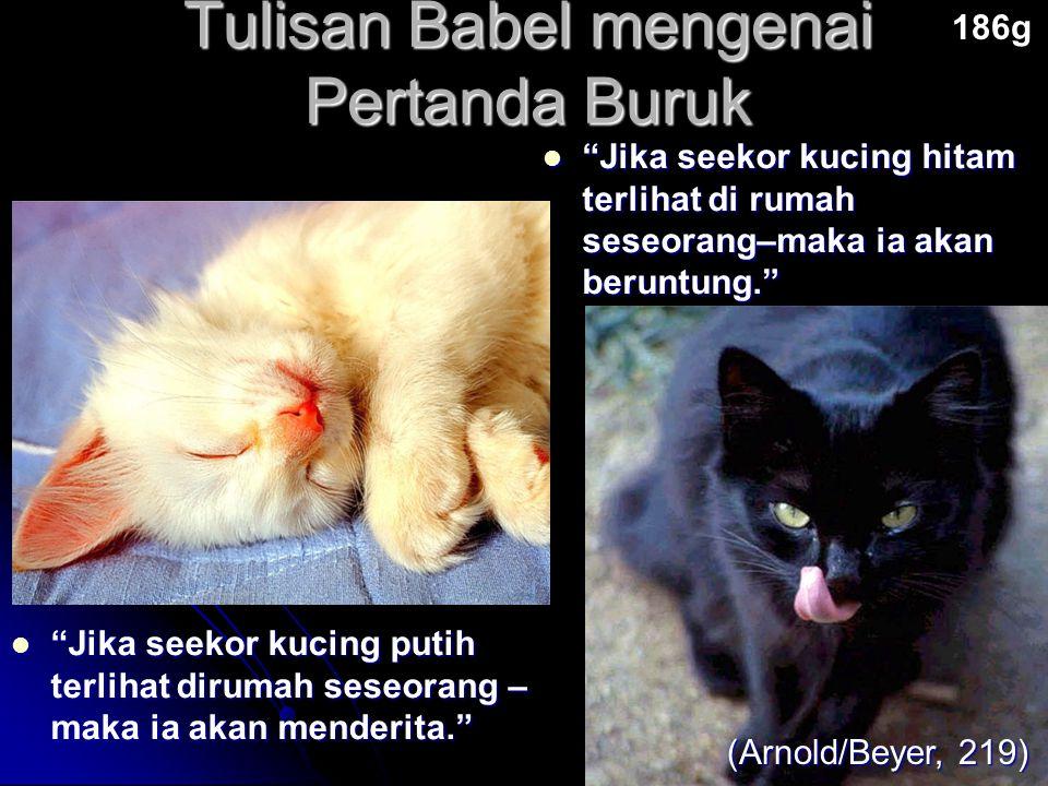 """Tulisan Babel mengenai Pertanda Buruk 186g (Arnold/Beyer, 219) """"Jika seekor kucing putih terlihat dirumah seseorang – maka ia akan menderita."""" """"Jika s"""