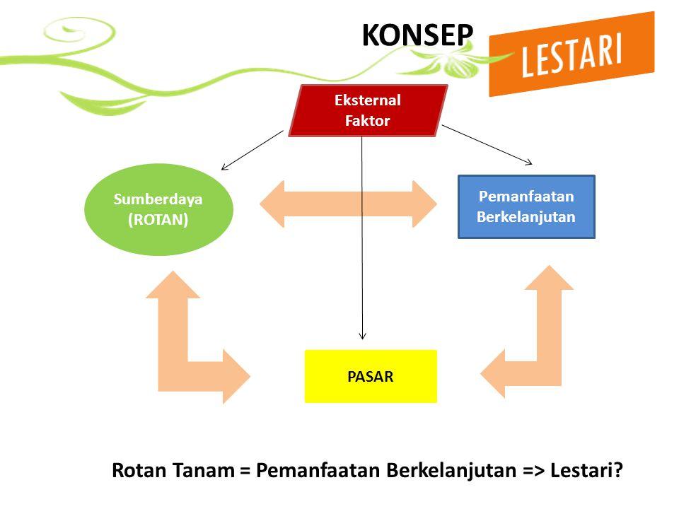 ANCAMAN KELESTARIAN ROTAN PASAR YANG SEDANG KEHILANGAN PASAR (TSI/TANAM) => persaingan dan produk substitusi ROTAN PASAR YANG DI PUNGUT TIDAK LESTARI (Lambang, Tohiti, Batang => alam) ROTAN NON PASAR YANG TIDAK ADA INTERVENSI PASARNYA => Seiring dengan hilangnya habitat rotan (hutan)