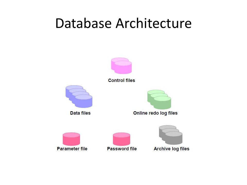File-file yang menyusun database Oracle dikelompokkan menjadi 3 bagian, yaitu: 1.Control File: file ini sangat penting untuk database, tanpanya Anda tidak bisa membuka data file untuk mengakses data yang ada pada database.