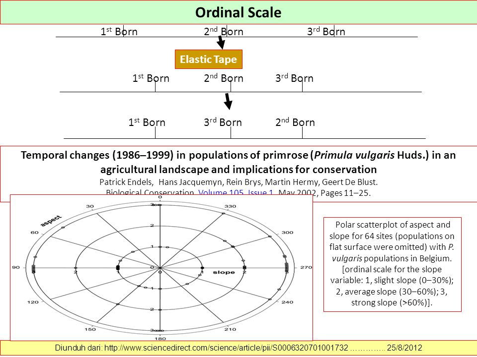 Nominal Scale BuddhistProtestantCatholicJewish BuddhistProtestantCatholicJewish Diunduh dari: http://www.sciencedirect.com/science/article/pii/S147016