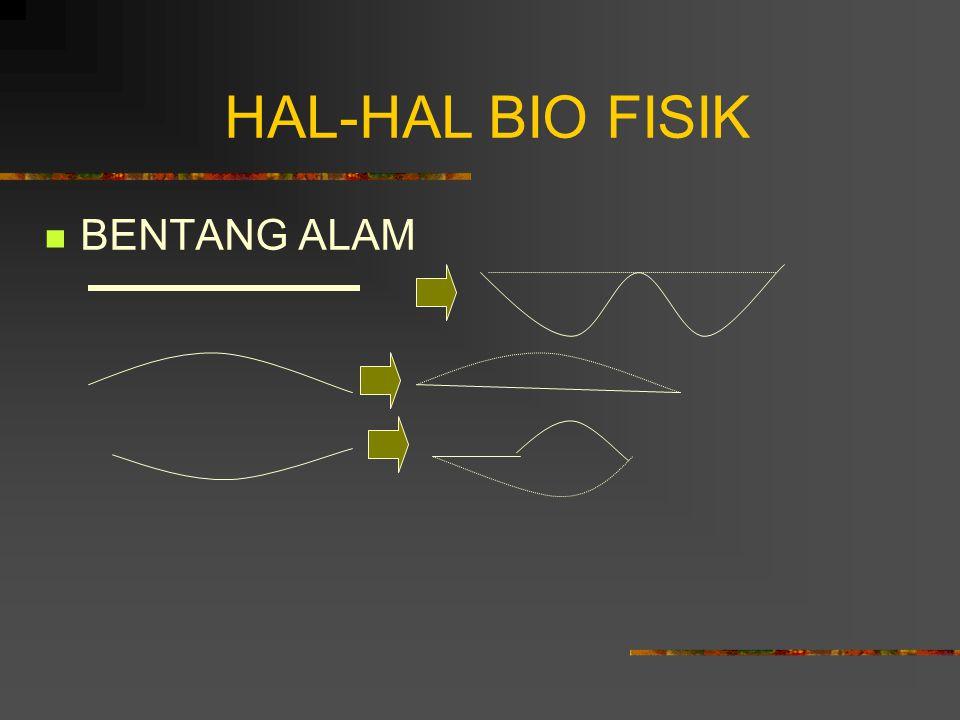 HAL-HAL BIO FISIK BENTANG ALAM