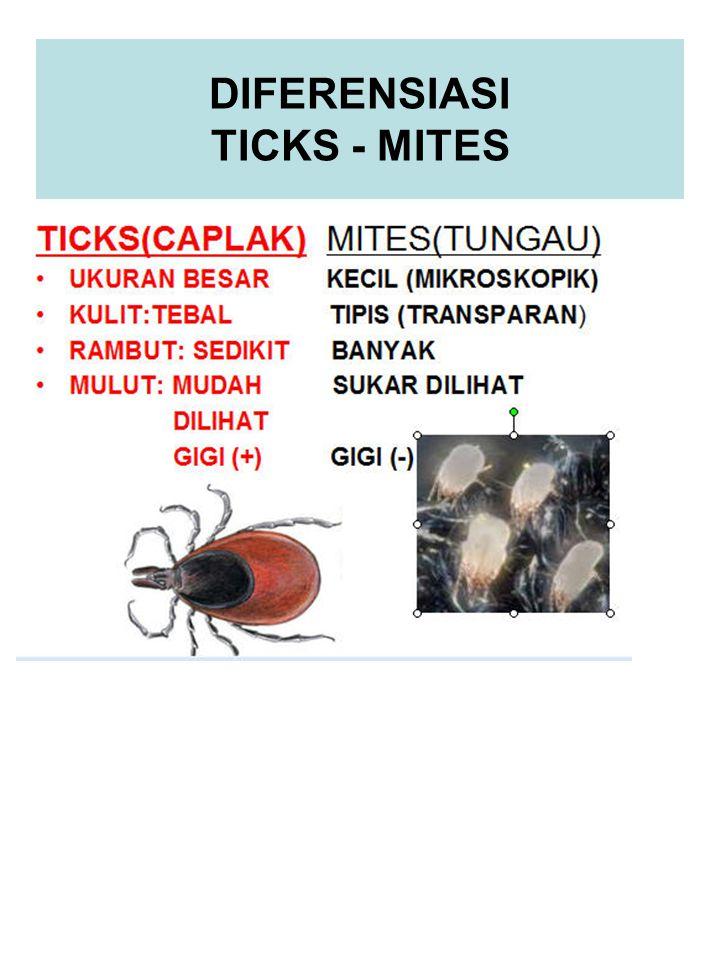 TICKS-MITES PENULAR/PENYEBAB PENYAKIT TICKS PENULAR: Arbovirus grup B (Kyasanur forest disease,Omsk hemorrhagic fever), Riketsiosis (Rocky Mountain spotted fever,Epidemic typhus), Bakteri (Relapsing Fever,Tularemia).