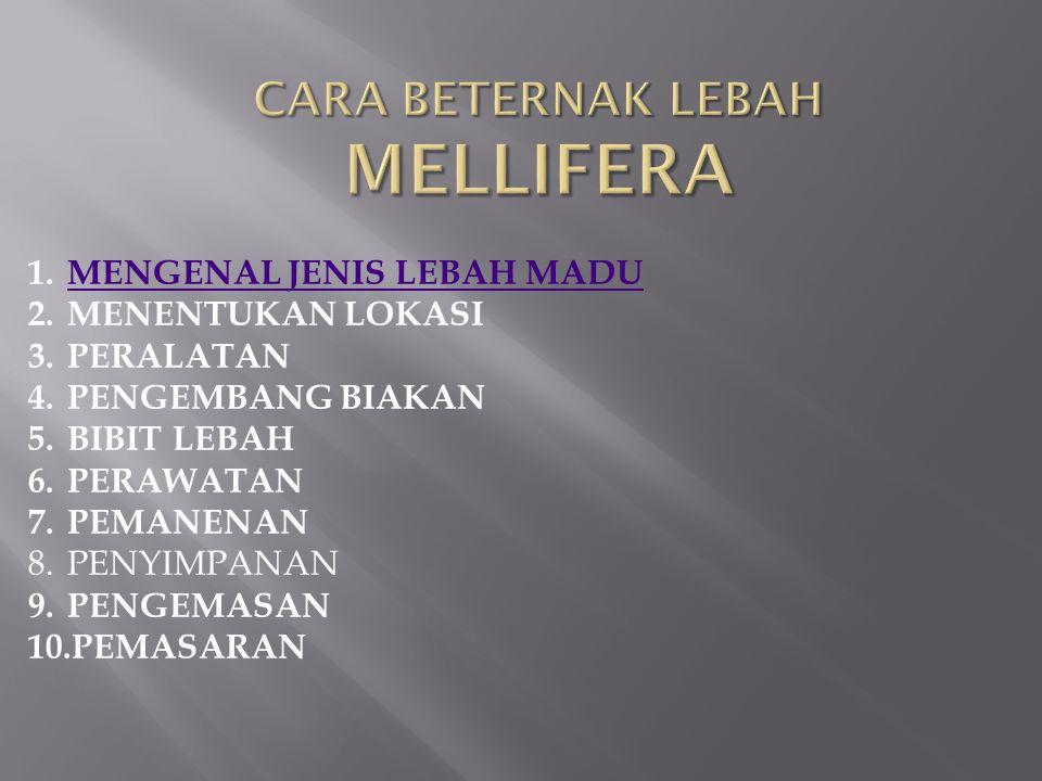 1.MENGENAL JENIS LEBAH MADUMENGENAL JENIS LEBAH MADU 2.MENENTUKAN LOKASI 3.PERALATAN 4.PENGEMBANG BIAKAN 5.BIBIT LEBAH 6.PERAWATAN 7.PEMANENAN 8.PENYI