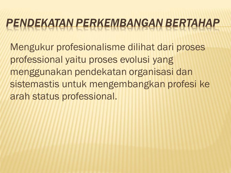 Mengukur profesionalisme dilihat dari proses professional yaitu proses evolusi yang menggunakan pendekatan organisasi dan sistemastis untuk mengembang